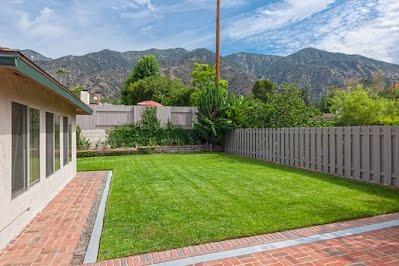 1360 backyard